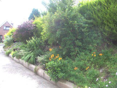 side garden bed